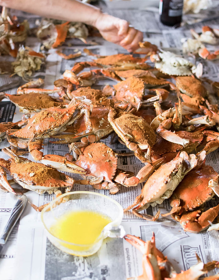 Old Bay Steamed Crabs in Virginia